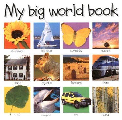 9780312491222: My Big World Book (My Big Board Books)