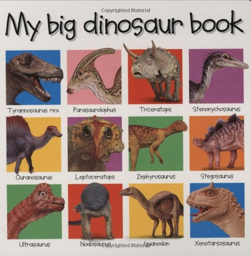 9780312493288: My Big Dinosaur Book (Priddy Books Big Ideas for Little People)