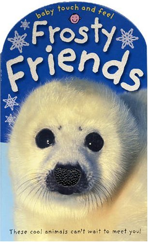 9780312493752: Baby Touch and Feel Frosty Friends