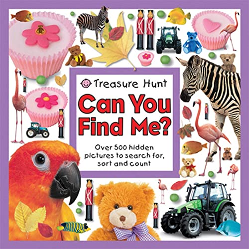 9780312502201: Treasure Hunt Can You Find Me? (Seek and Find Book)