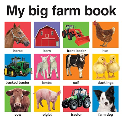 9780312510824: My Big Farm Book (My Big Board Books)