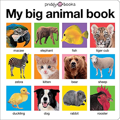9780312511074: My Big Animal Book (My Big Board Books)