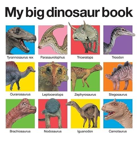 9780312513061: My Big Dinosaur Book
