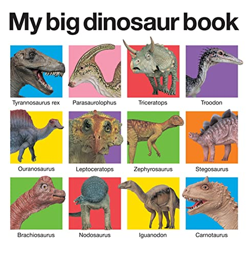 9780312513061: My Big Dinosaur Book