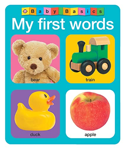 9780312513184: Baby Basics My First Words
