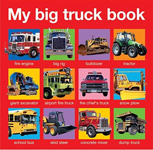 9780312513689: My Big Truck Book