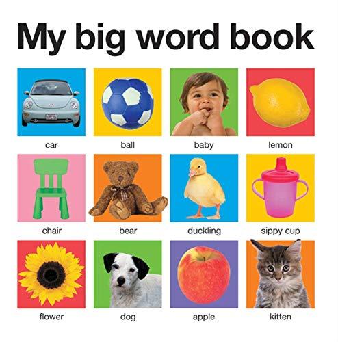 9780312513733: My Big Word Book (casebound) (My Big Board Books)