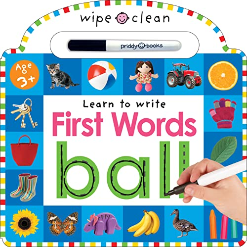 9780312513931: Wipe Clean: First Words