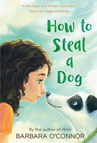 9780312561123: How to Steal a Dog: A Novel