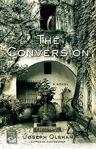 9780312565565: The Conversion: A Novel