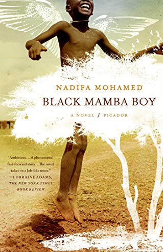9780312569235: Black Mamba Boy: A Novel