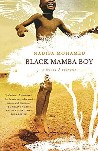 9780312569235: Black Mamba Boy