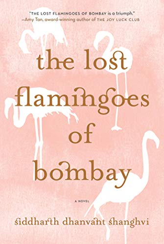 9780312593490: The Lost Flamingoes of Bombay: A Novel