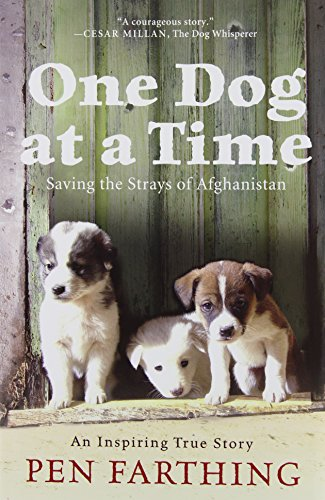 9780312607746: One Dog at a Time: Saving the Strays of Afghanistan
