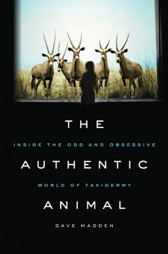 9780312643713: The Authentic Animal: Inside the Odd and Obsessive World of Taxidermy