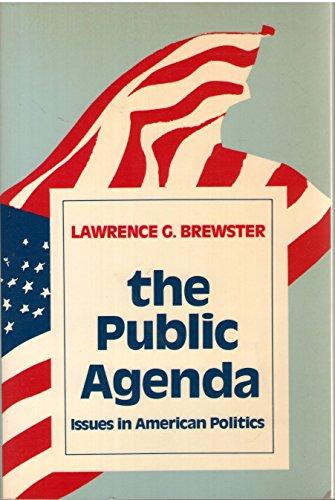 9780312653934: The Public Agenda: Issues in American Politics