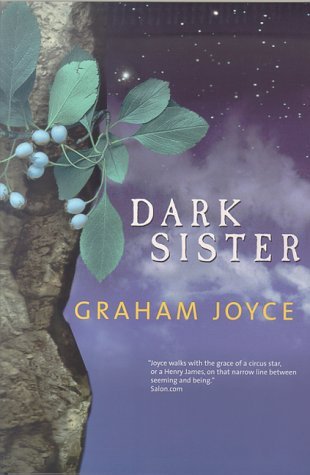 9780312872540: Dark Sister