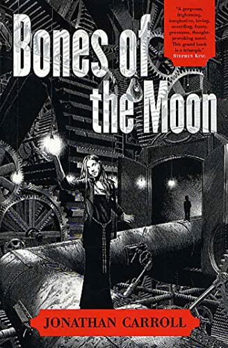 9780312873127: Bones of the Moon
