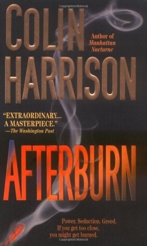 9780312978709: Afterburn: A Novel