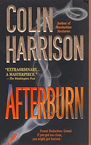 9780312978709: Afterburn: A Novel