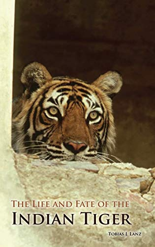 9780313365485: The Life and Fate of the Indian Tiger