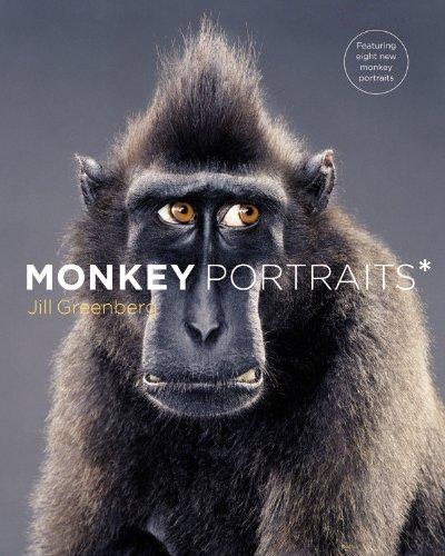 9780316005128: Monkey Portraits
