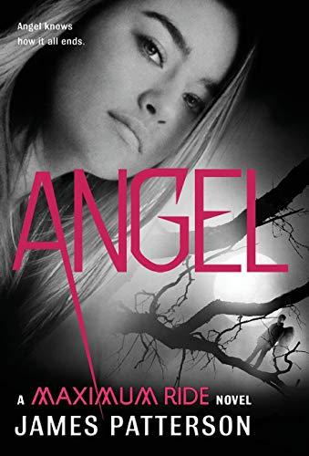 9780316036207: Angel (Maximum Ride)