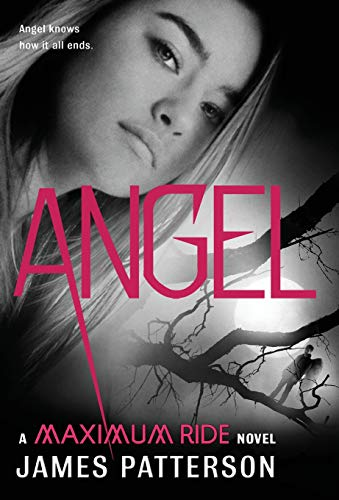 9780316036207: Angel: A Maximum Ride Novel