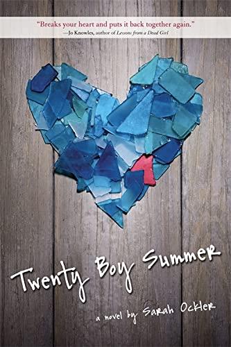 9780316051583: Twenty Boy Summer