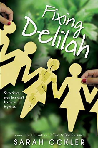 9780316052085: Fixing Delilah