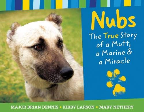 9780316053181: Nubs: The True Story of a Mutt, a Marine & a Miracle