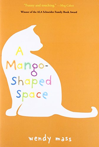 9780316058254: A Mango-Shaped Space