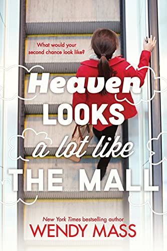 9780316058506: Heaven Looks a Lot Like the Mall
