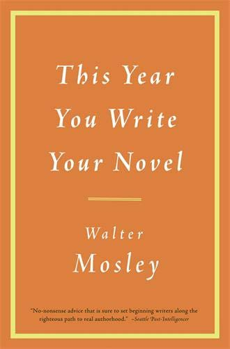 9780316065498: This Year You Write Your Novel