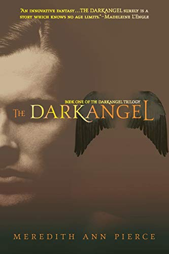 9780316067232: The Darkangel (Darkangel Trilogy)
