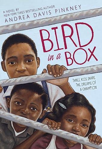 9780316074025: Bird in a Box