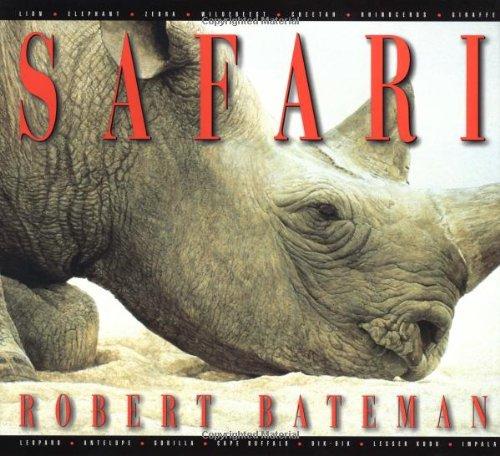 9780316082655: Safari