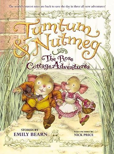 9780316085984: Tumtum & Nutmeg: The Rose Cottage Adventures