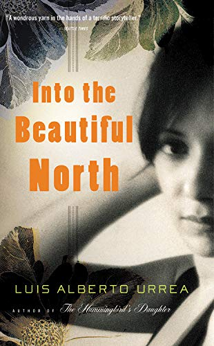 9780316096294: Into The Beautiful North: A Novel