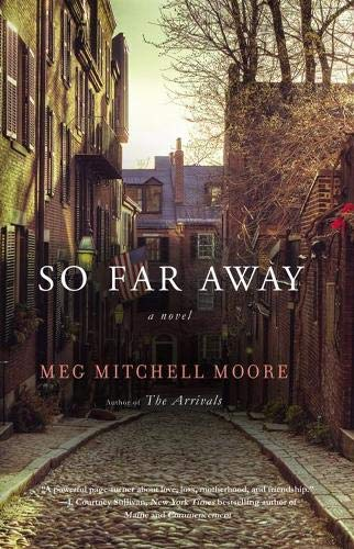 9780316097697: So Far Away: A Novel
