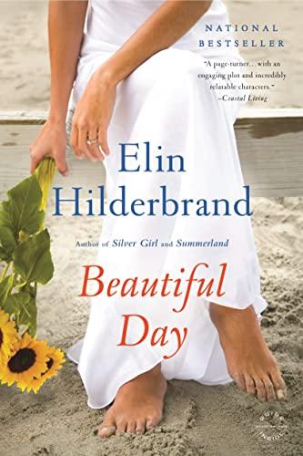 9780316099769: Beautiful Day: A Novel