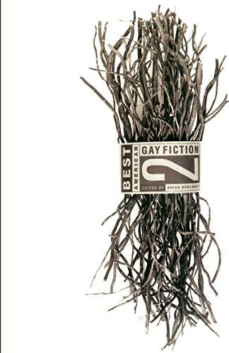 Best American Gay Fiction #2: Cooper, Bernard
