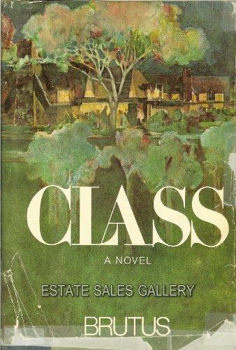 9780316113205: Class;: A novel,