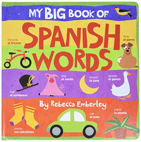 9780316118033: My Big Book of Spanish Words