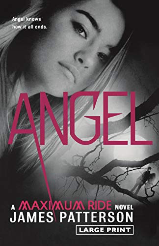 9780316122016: Angel: A Maximum Ride Novel