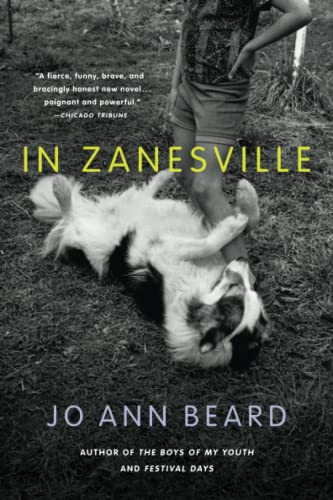In Zanesville - A Novel