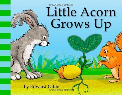 9780316127080: Little Acorn Grows Up