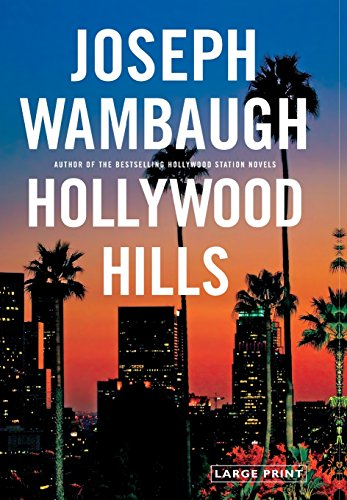 9780316130585: Hollywood Hills: A Novel