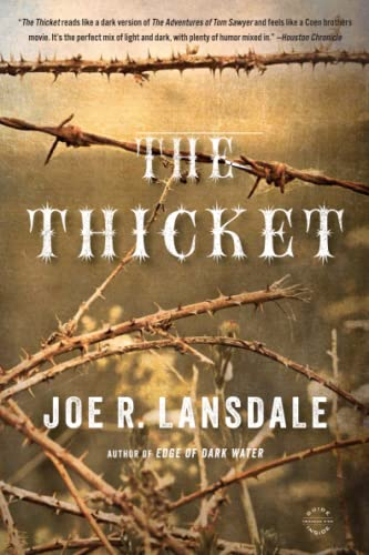 9780316188449: The Thicket