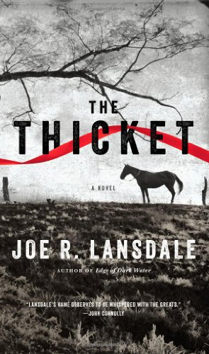 9780316188456: The Thicket